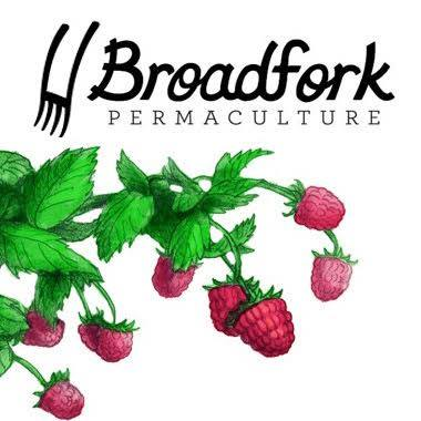 Broadfork Co-op logo web